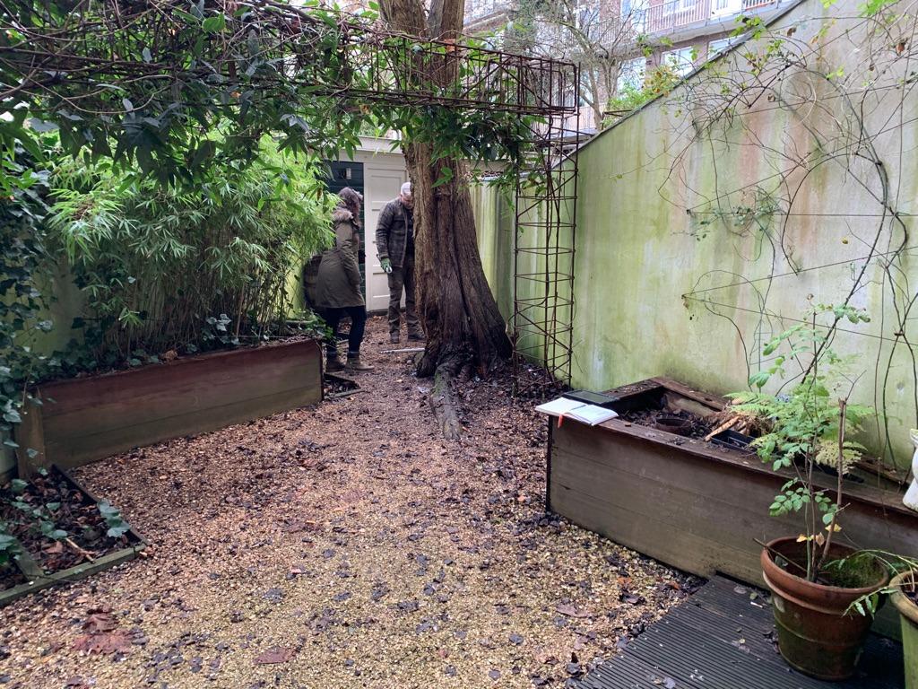 Grondradar onderzoek naar wortels boom